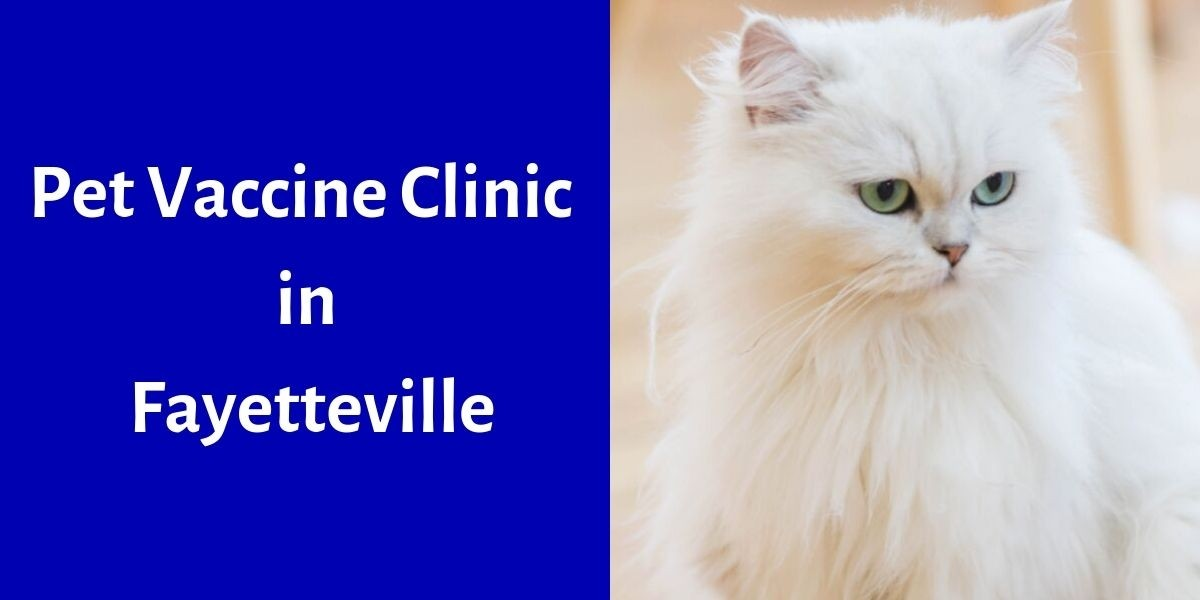Pet Vaccine Clinic in Fayetteville